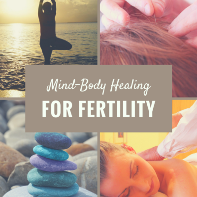 The To Make a Mommy Fertility Mind-Body Program