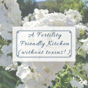 Fertility Friendly Kitchen without toxins