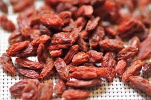 Goji berries for male fertility- a superfood for sperm quantity and quality