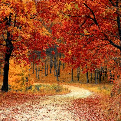 Fertility in Fall and The Autumnal Equinox