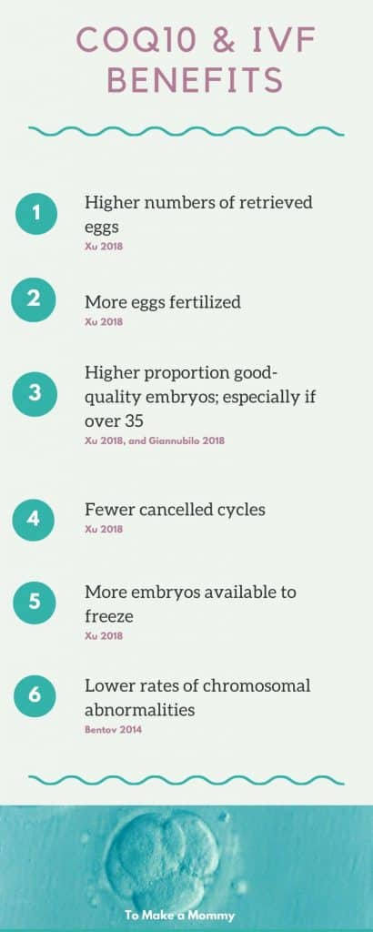 The many benefits of CoQ10 on IVF treatments, egg health, sperm health, Ubiquinol or Ubiquinone!